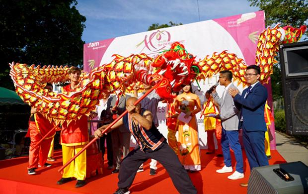 Festival de cultura vietnamita en Alemania hinh anh 1