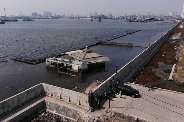 Proyecta Indonesia construir muro de contencion maritimo hinh anh 1