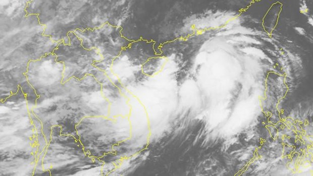 Anuncian en Vietnam formacion en Mar del Este de tormenta tropical Wipha hinh anh 1