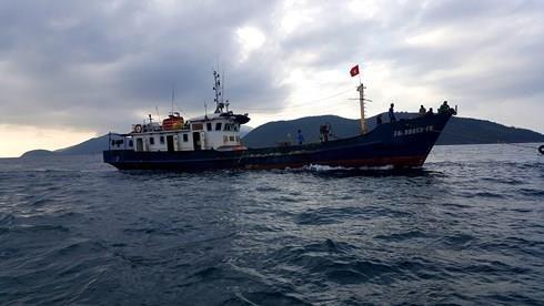 Rescatan a seis pescadores vietnamitas tras naufragio hinh anh 1