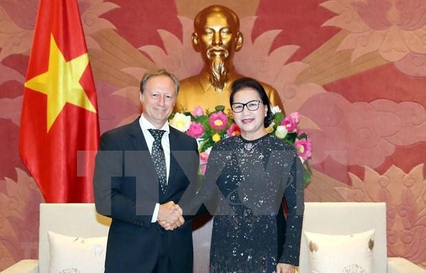 Aboga presidenta del Parlamento vietnamita por pronta ratificacion de acuerdos firmados con la UE hinh anh 1