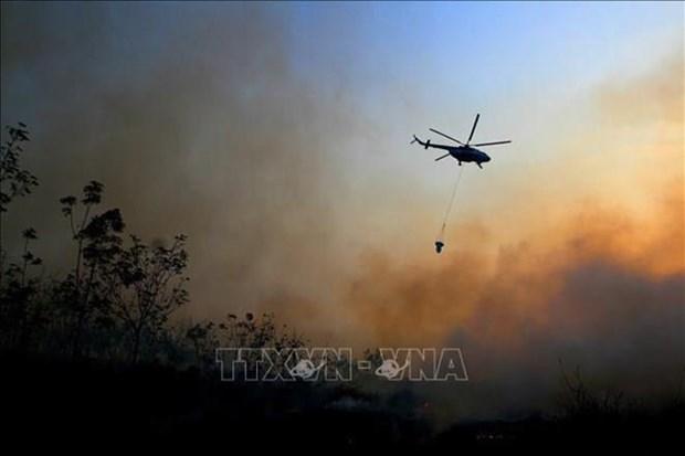 Despliega Indonesia miles de efectivos para combatir incendios forestales hinh anh 1