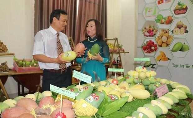 Disminuye Vietnam sus exportaciones de frutas y verduras en primeros siete meses de 2019 hinh anh 1