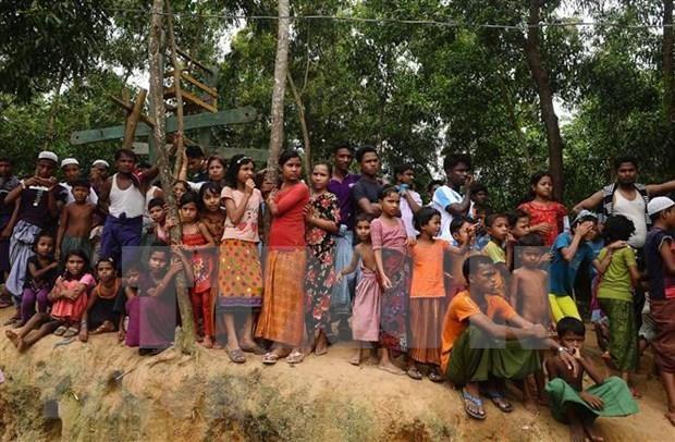 Asiste Australia a ASEAN en lucha contra trafico de personas hinh anh 1