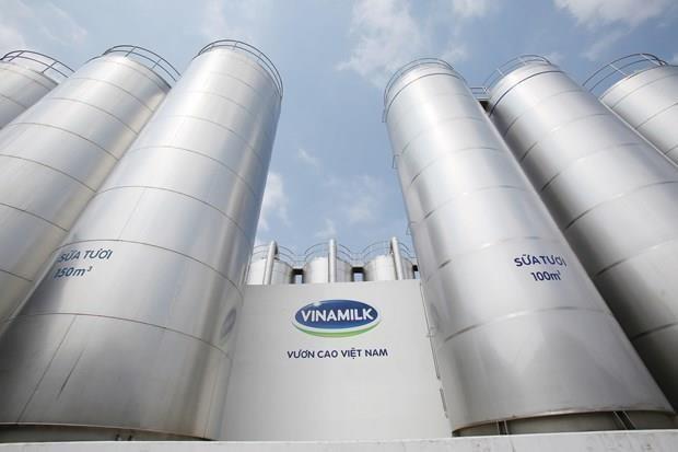 Registra grupo lacteo vietnamita Vinamilk ingreso record en segundo trimestre del ano hinh anh 1