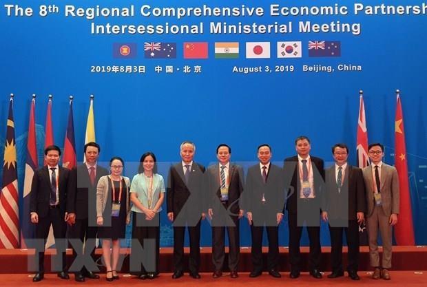 Proyectan firmar RCEP en Vietnam en 2020 hinh anh 1