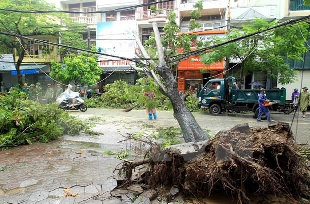 Premier de Vietnam urge a implementar medidas para superar secuelas del tifon Wipha hinh anh 1