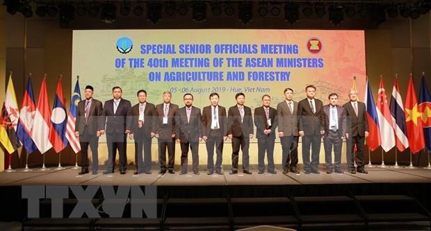 Inauguran en Vietnam Conferencia de Altos Funcionarios de Agricultura y Silvicultura de la ASEAN hinh anh 1
