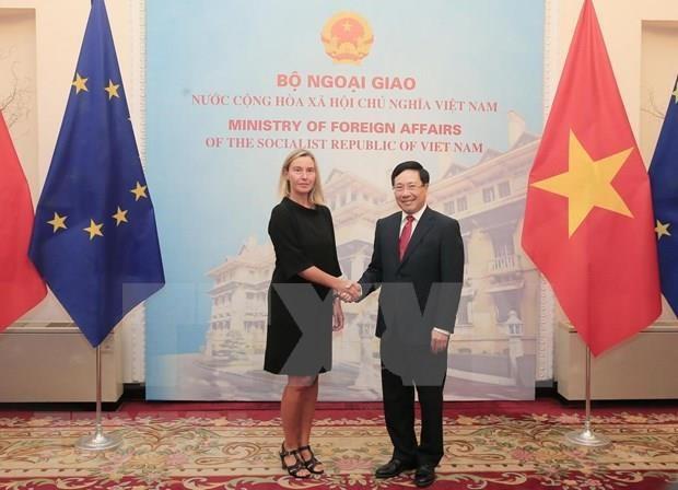 Califican nexos economicos como pilar de relaciones Vietnam-UE hinh anh 1
