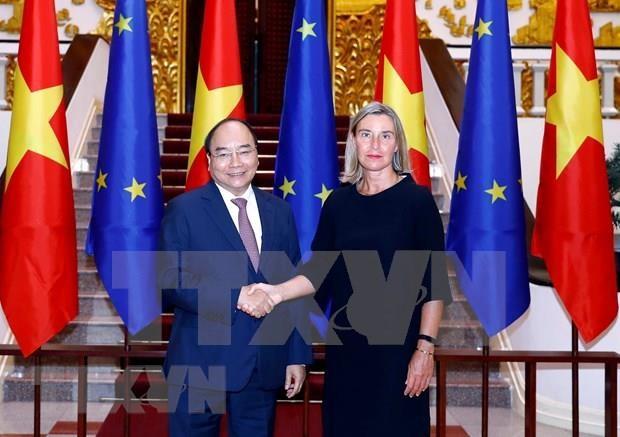Exhorta premier de Vietnam ratificacion de TLC con la UE hinh anh 1