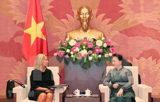 Proyecta Parlamento de Vietnam ratificar en octubre el TLC con la UE hinh anh 1