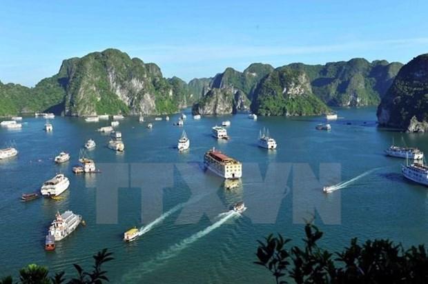 Promocionaran imagen de bahia vietnamita de Ha Long en mayor carrera oceanica del mundo hinh anh 1