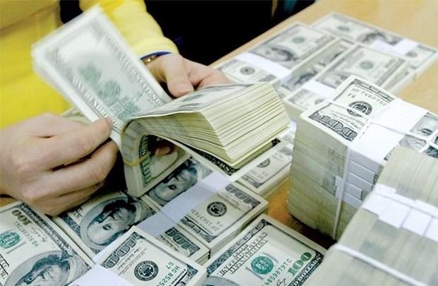Liquido Vietnam deudas por mas de mil millones de dolares hinh anh 1