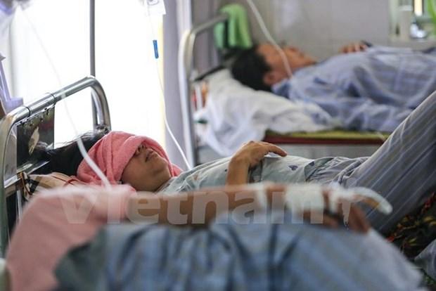 Reportan en Vietnam la muerte de 15 personas como consecuencia del dengue hinh anh 1