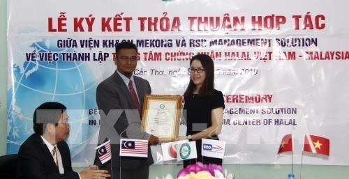 Inversores de Singapur y Malasia buscan oportunidades en Can Tho hinh anh 1