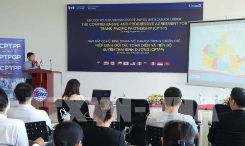 Aprovecha ciudad vietnamita oportunidad de cooperacion con Canada hinh anh 1