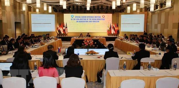 Paises de ASEAN intensifican cooperacion en sector agroforestal hinh anh 1