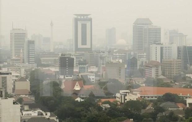 Anuncia Indonesia regulaciones a automoviles privados para reducir contaminacion atmosferica hinh anh 1