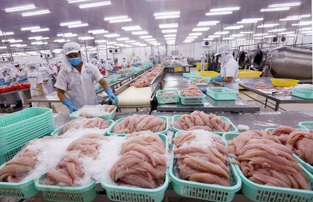 Desciende ligeramente valor de las exportaciones de productos acuicolas de Vietnam durante 2019 hinh anh 1
