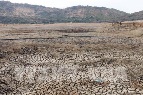 Promueven en Vietnam implementacion de tratados internacionales sobre respuesta al cambio climatico hinh anh 1