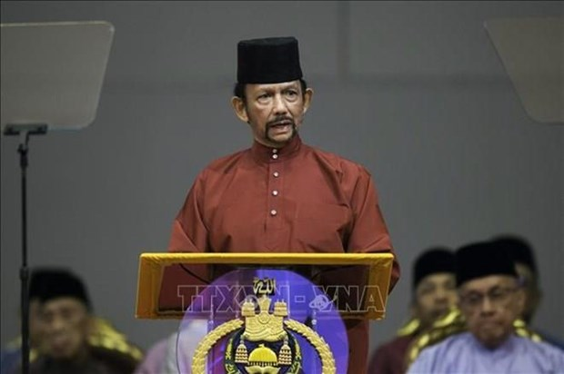 Brunei elogia importante papel de los paises socios de la ASEAN hinh anh 1