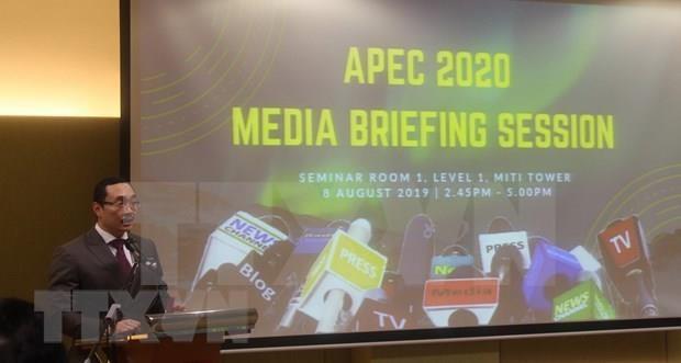 Acogera Malasia ano del APEC 2020 hinh anh 1