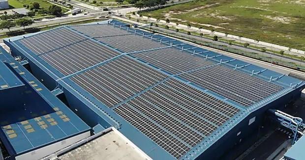 Planea compania petrolera Shell instalar paneles solares en refineria de Singapur hinh anh 1