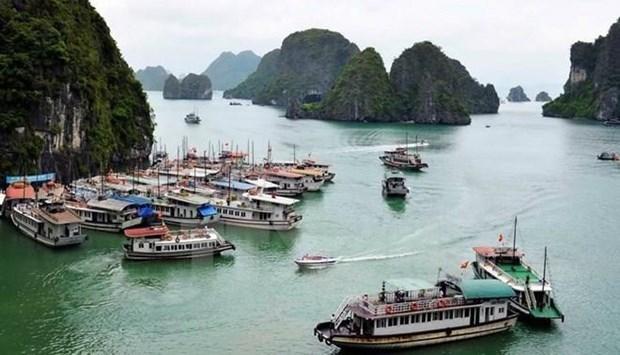 Promueven la proteccion del medio ambiente en Ha Long hinh anh 1