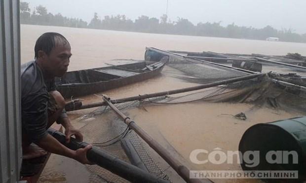Desastres naturales matan siete personas en Vietnam hinh anh 1