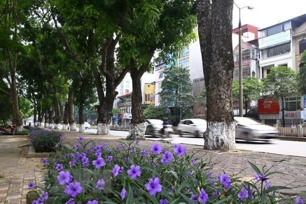 Desarrollan en Vietnam seminario sobre crecimiento verde de Hanoi hinh anh 1
