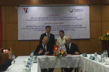 Impulsaran Vietnam y Uruguay la cooperacion comercial hinh anh 1