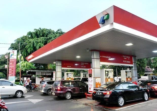Aplica la UE aranceles antisubvenciones al biodiesel indonesio hinh anh 1