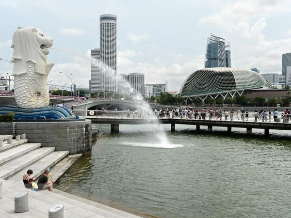 Mantienen tendencia bajista las exportaciones de Singapur hinh anh 1