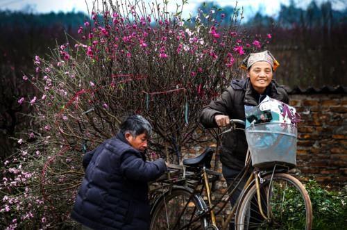Exhibiran fotos sobre la belleza de Hanoi hinh anh 1