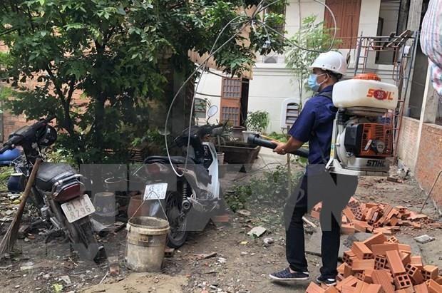 Aumentaron en Ciudad Ho Chi Minh casos de dengue en siete meses de 2019 hinh anh 1