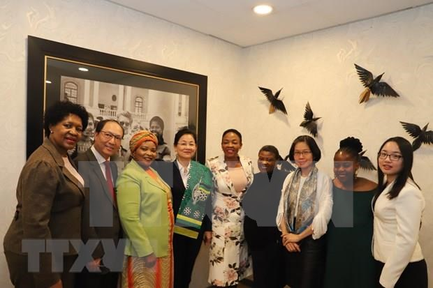 Impulsan Vietnam y Sudafrica cooperacion a favor del empoderamiento de la mujer hinh anh 1