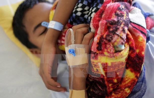 Reportan en Myanmar la muerte de 48 personas por dengue hinh anh 1