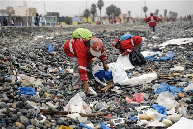 Jovenes de Vietnam unen manos en lucha contra residuos plasticos hinh anh 1