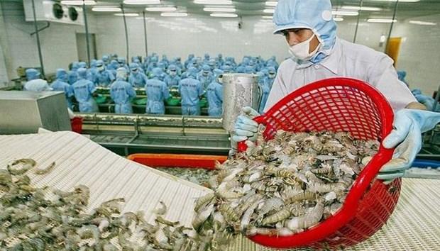 Especialistas pronostican panorama positivo para exportaciones acuaticas de Vietnam a China hinh anh 1