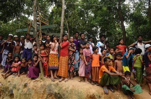 ONU reanuda plan para repatriar a los rohingya a Myanmar hinh anh 1