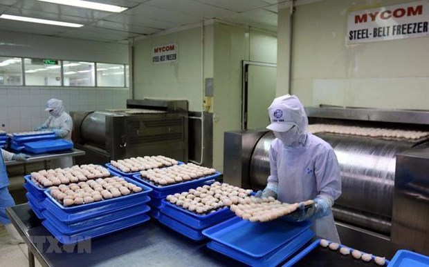 Aumenta valor de la inversion extranjera directa en Ciudad Ho Chi Minh hinh anh 1