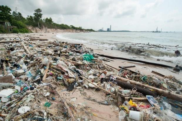 Reducen en Tailandia uso de 1,5 mil millones de bolsas de plastico al ano hinh anh 1
