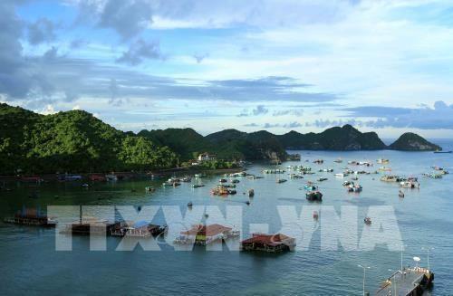 Busca Vietnam soluciones para promover desarrollo turistico hinh anh 1
