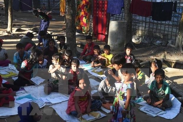 Impulsan en Bangladesh repatriacion de refugiados rohinyas hinh anh 1