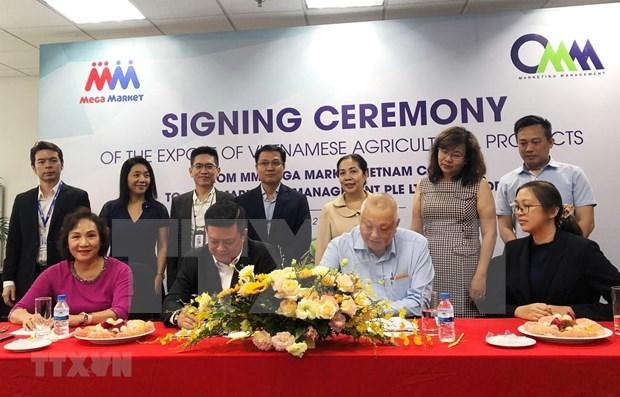 Exportaran 20 toneladas de productos agricolas vietnamitas a Singapur en septiembre hinh anh 1