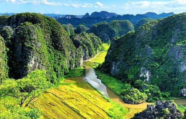 Vietnam entre los diez paises con mayor crecimiento turistico en el mundo hinh anh 1