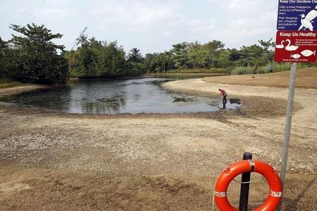 Sufre Singapur sequia prolongada por Dipolo del Oceano Indico hinh anh 1