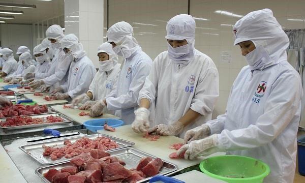 Incrementa Vietnam exportaciones de atun a Estados Unidos hinh anh 1