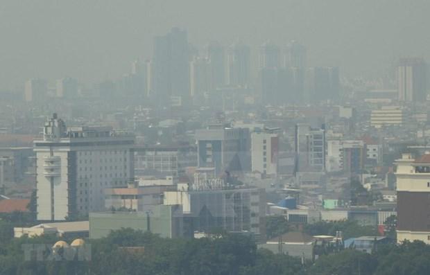 Plantea Indonesia trasladar su capital a isla de Borneo hinh anh 1