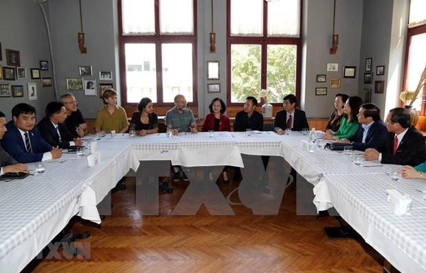 Vietnam considera importante el desarrollo de sus nexos con Turquia hinh anh 1